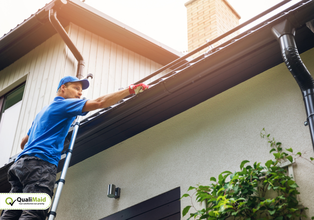 Importance of Walls and Roof Cleaning Services