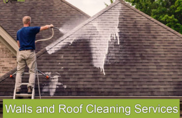 walls and roof cleaning services
