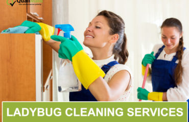 Ladybug Cleaning Services